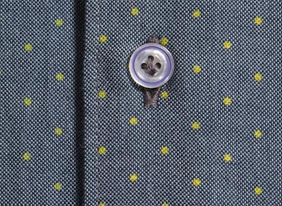 Рубашка Massimo Dutti - хлопок-оксфорд с принтом