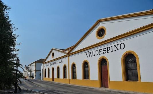 Хозяйство Valdespino