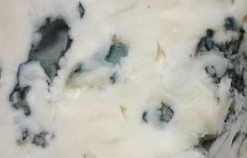 сыр Santa Rosa