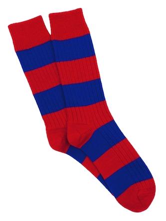 Corgi-socks2
