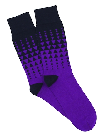 Corgi_socks3