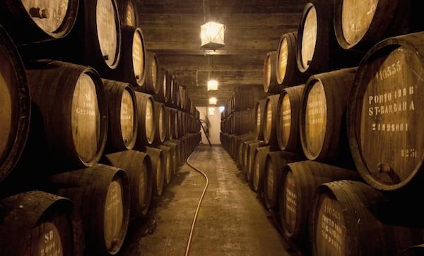 Pocas - cellar