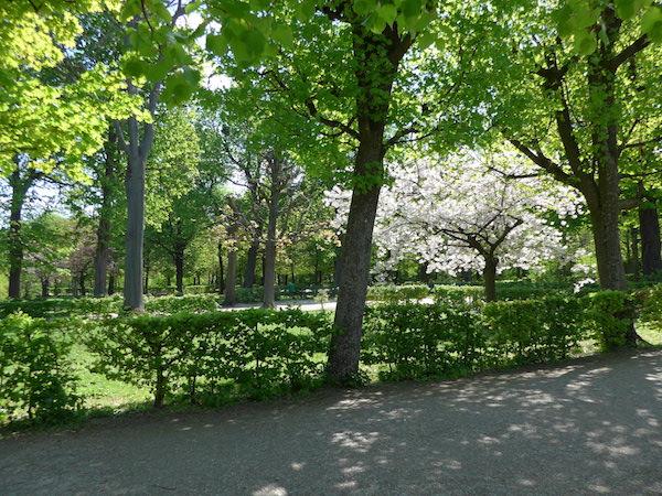 Gardens-Schonbrunn2