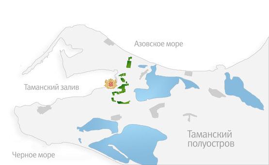 Фанагория карта