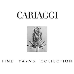 Логотип Cariaggi