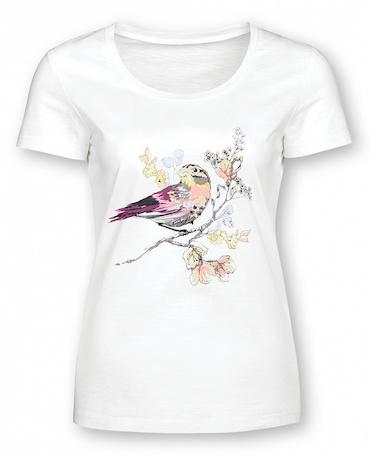 футболка бренда Pelican