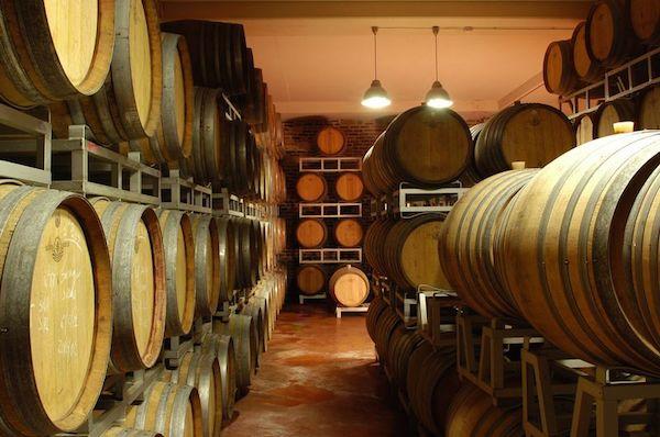 бочки с вином в Абруццо