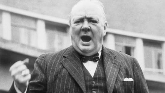 бабочка Уинстона Черчилля