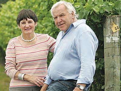 Seifried виноделы