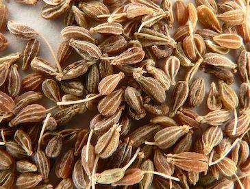 Анис - семена