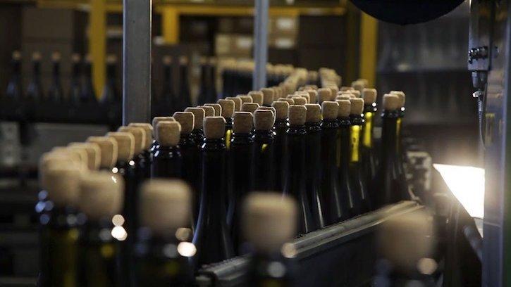 бутилировка вина